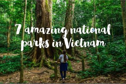 7 amazing national parks in Vietnam