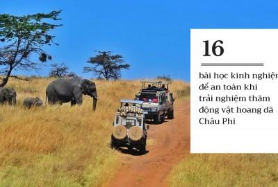 16 bài học kinh nghiệm để khám phá thế giới động vật hoang dã châu Phi an toàn